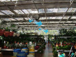 Climatizacion en invernaderos
